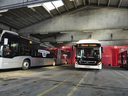 Neue umweltfreundliche Busse für ganz Wien