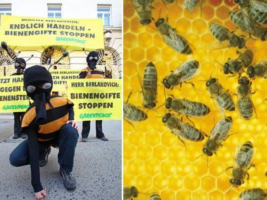Greenpeace-Aktivisten demonstrierten vor dem Umweltministerium in Wien für Bienen