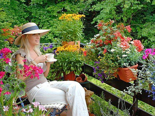 Wer einen grünen Daumen hat, kann mit seinem prachtvollen Balkon beim Wettbewerb der Stadt Wien gewinnen