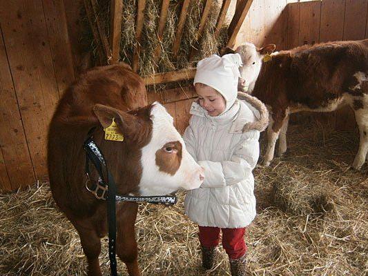 Kinder lieben den Nachwuchs im Kuhstall am Landgut Wien Cobenzl