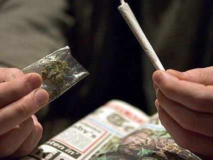 Die Polizei nahm den mutmaßlichen Drogendealer fest.