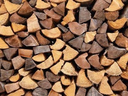 Holz ist nicht gleich Holz - die Verwendung ist sehr vielseitig.