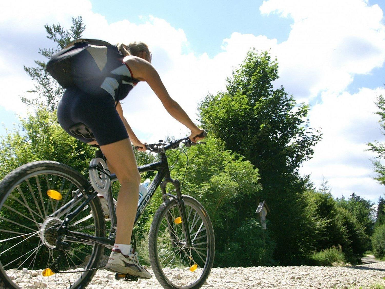 10 Empfehlungen zum Thema Mountainbike und Sicherheit.