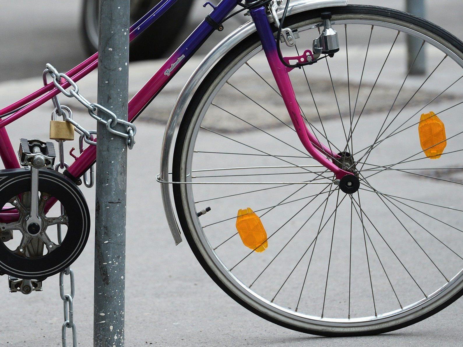 Festivalradln - Mit dem Fahrrad zum GLOBAL 2000 TOMORROW FESTIVAL