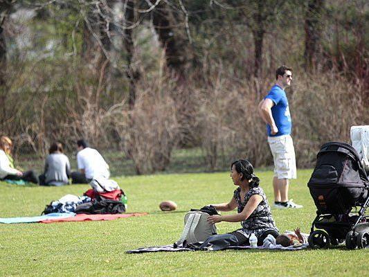 Was man in Parks wie dem Stadtpark darf und was nicht, sorg derzeit für Verwirrung