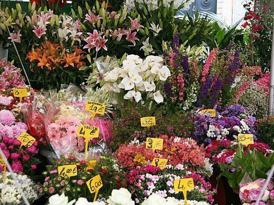 Eine Blumenhandlung in Josefstadt wurde fast überfallen