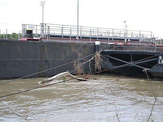 Hochwasser: So sieht es derzeit an der Donau bei Nussdorf aus