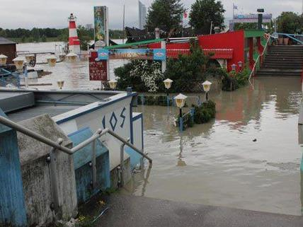 Das Hochwasser treibt zahlreiche Schaulustige auf die Copa Cagrana.