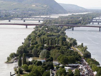 So sieht die Donauinsel nach dem Hochwasser aus