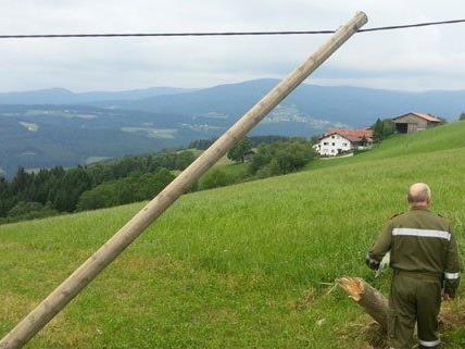 Der Lenker bleib bei dem Unfall in Niederösterreich unverletzt.