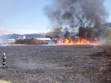 Viele Teile Österreichs sind vor akuten Wald- und Wiesenbränden gewarnt.