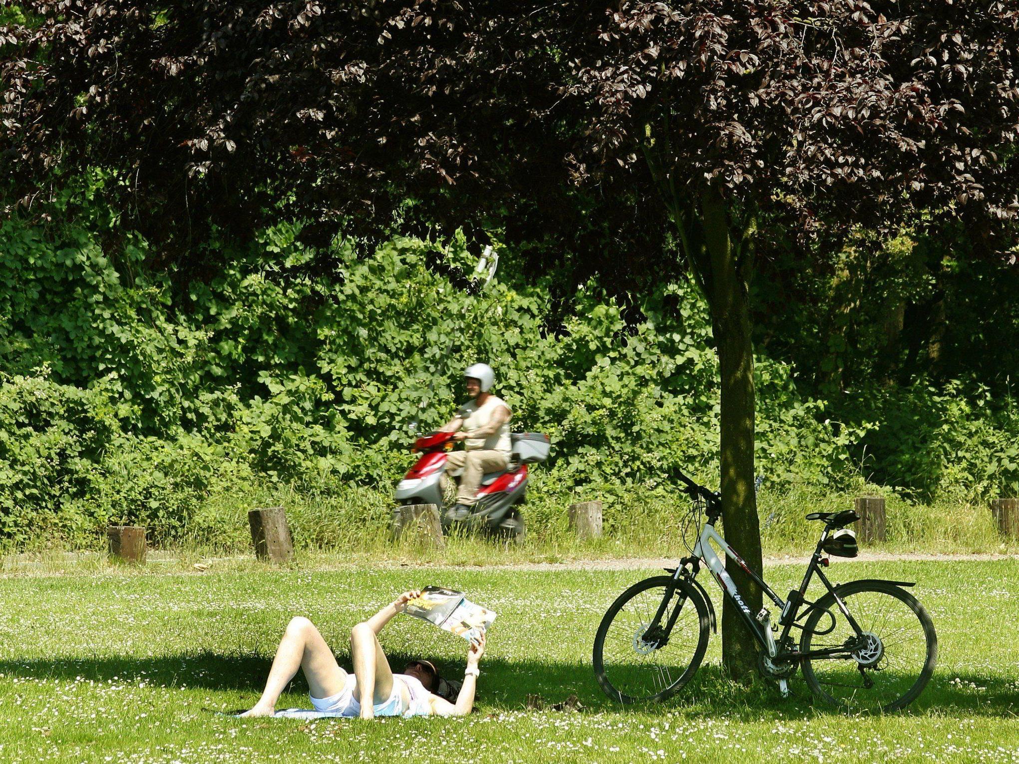 Sommerliches Wochenende in Wien: Das Wetter im Detail