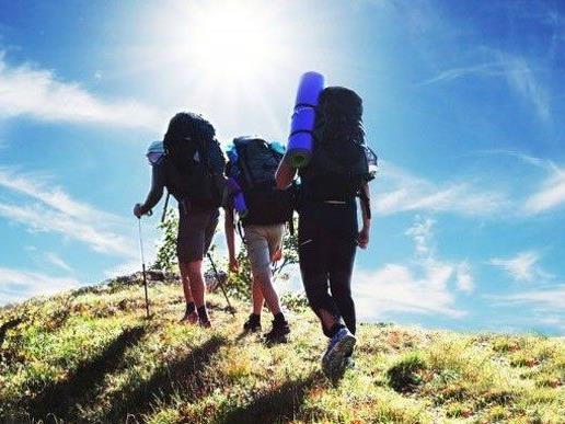 Neues Leitsystem für Wiener Wanderwege