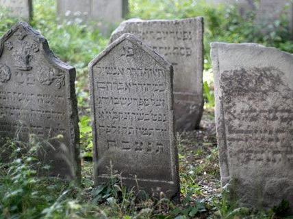 Sensationsfund auf Wiens ältestem Jüdischen Friedhof Seegasse