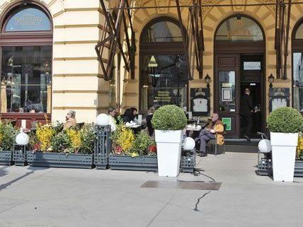 Auch in diesem Jahr wurde wieder nach Wiens schönsten Schanigärten gesucht.