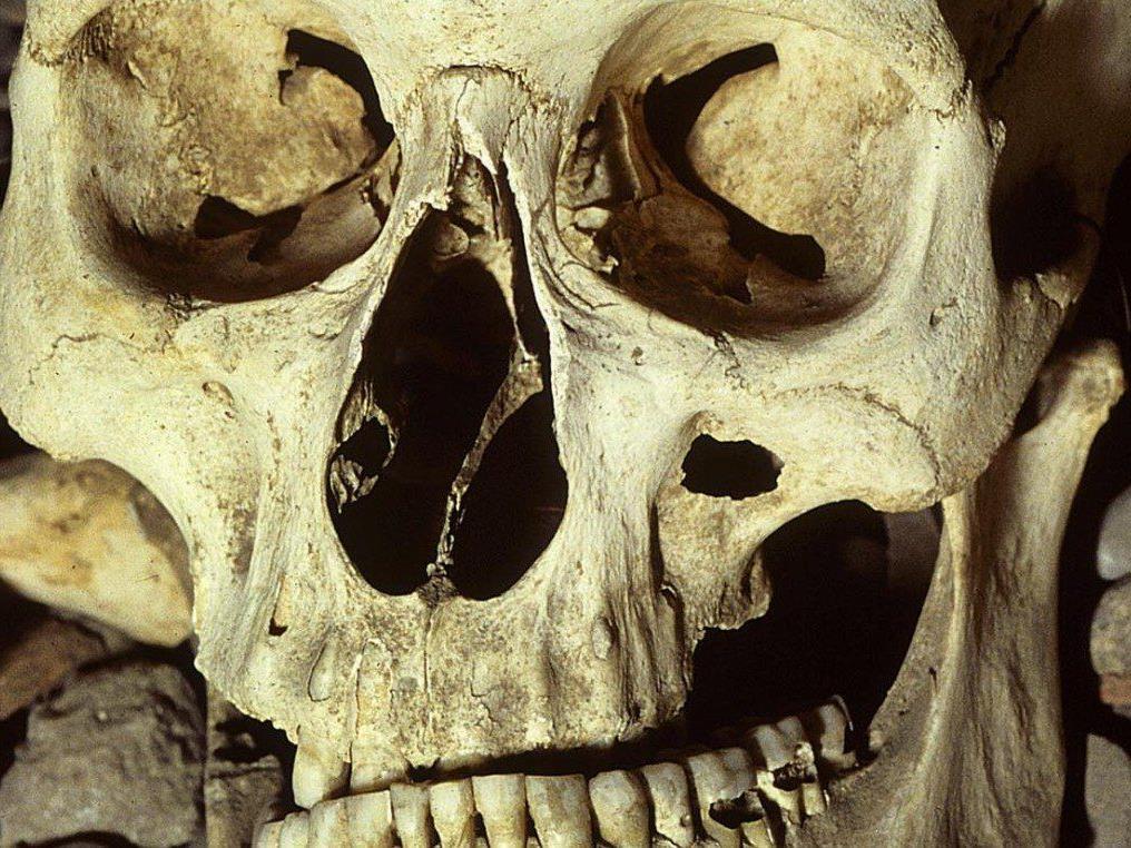 Knochen zu Hause gehortet: Ein Burgenländer wurde nun wegen Störung der Totenruhe angezeigt.