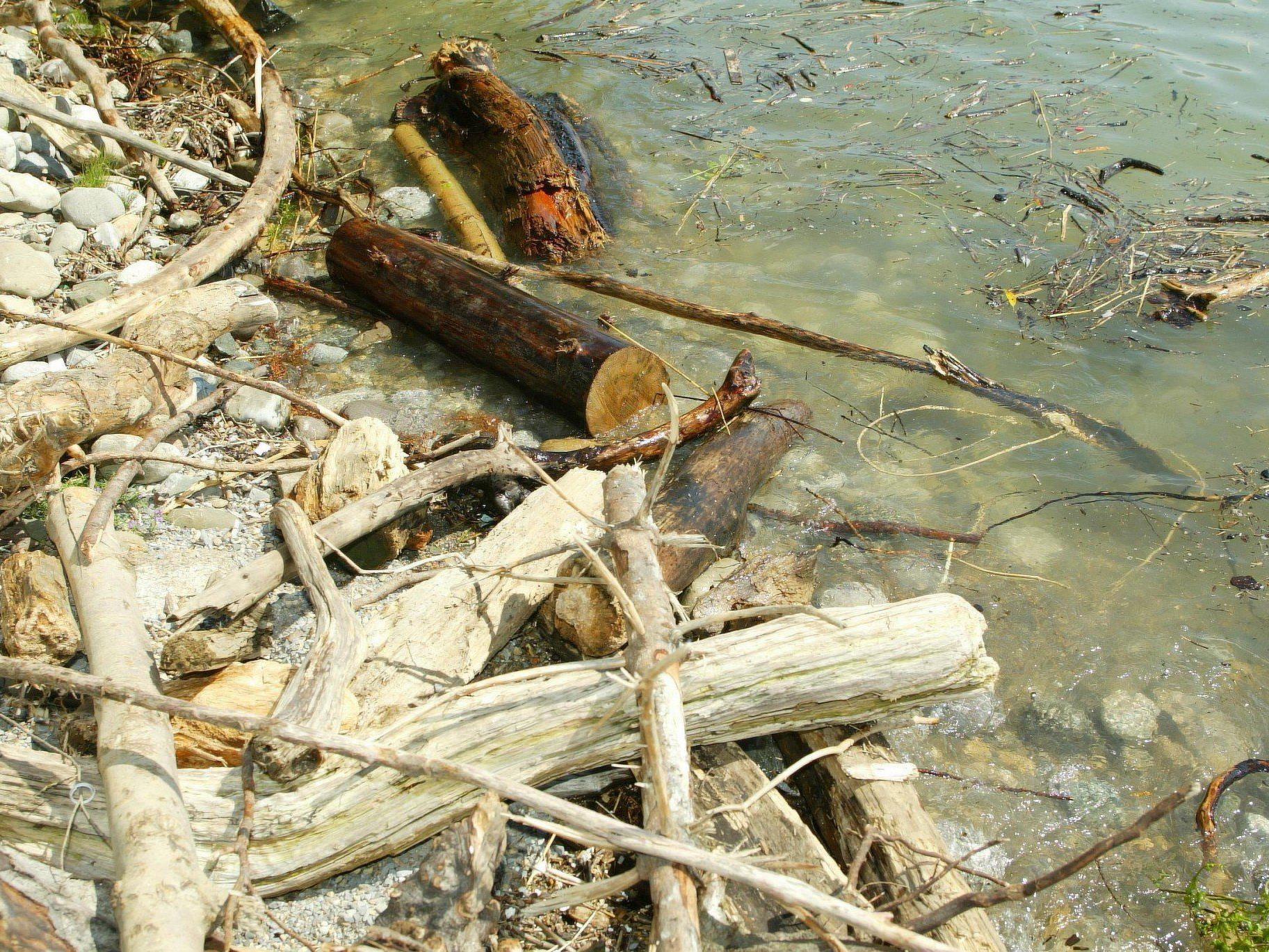 Vier Tote binnen weniger Tage lautet die traurige Bilanz am Bodensee.