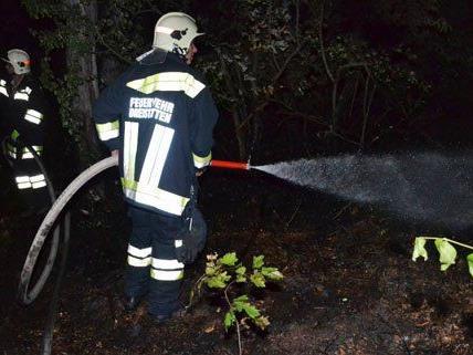 Am Donnerstag gab es einen Waldbrand in Niederösterreich.