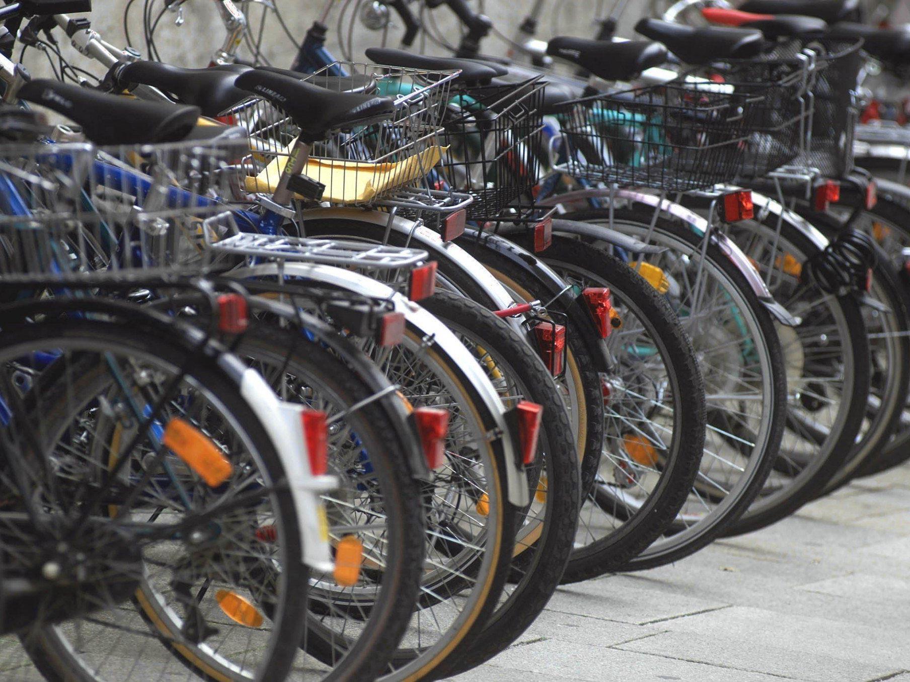 Im Bereich des Schloss Schönbrunns konnte ein Fahrraddieb festgenommen werden.