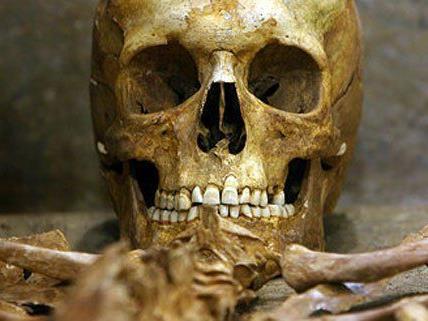 in Niederösterreich wurde ein 2.300 Jahre altes Skelett gefunden.
