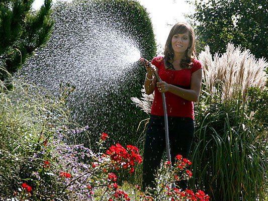 Alles für den Garten finden Sie auf der Horti 2013