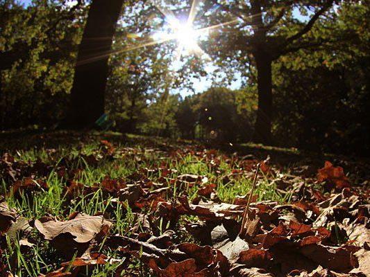 Es ist offiziell Herbst - die Sonne zeigt sich nun seltener