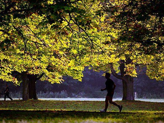 Laufen macht im Herbst besonders viel Freude