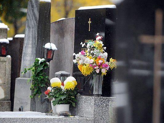 Am Wiener Zentralfriedhof