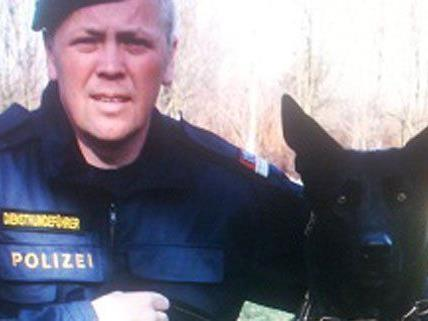 Polizeihund Argos erschnüffelte den Einbrecher.