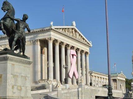 Pink Ribbon am Parlament in Wien.