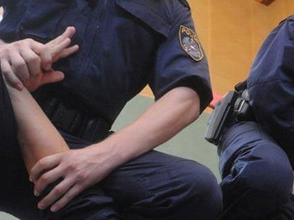 Ein Einbrecher wurde in Liesing festgenommen