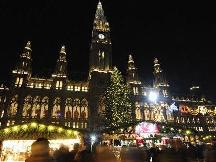 1.000 Lampen lassen den Weihnachtsbaum erstrahlen.