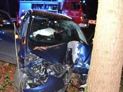 Der Lenker wurde bei dem Unfall in NÖ verletzt.