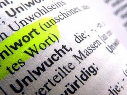 Unwort, Wort und Jugendwort des Jahres 2013 werden gesucht.