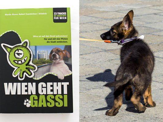 Hunde-Spazierführer zu gewinnen!