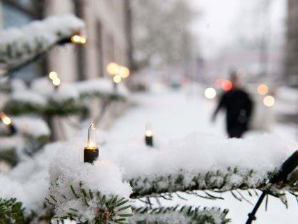 Am 12. Dezember öffnen die Christbaummärkte in Wien.