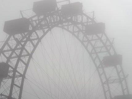 Nebelige Woche in Wien