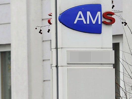"""Der Vorwurf der """"sinnlosen AMS-Kurse"""" wurde laut"""
