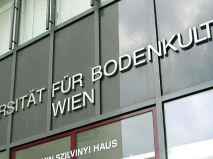 An der Wiener BOKU werden Preise verliehen
