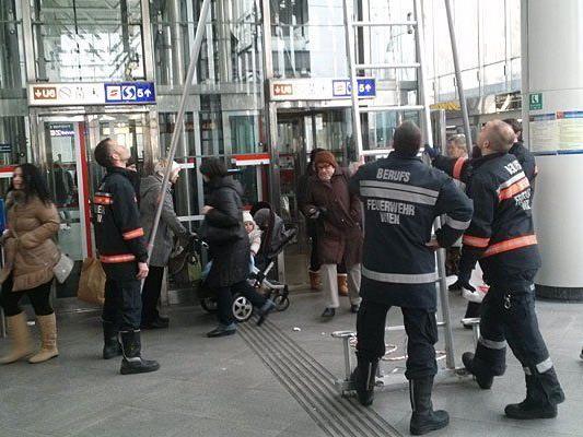 Eine Taube hatte sich in die U6-Station Wien-Floridsdorf verflogen