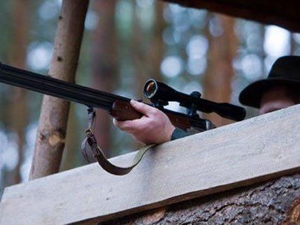Ein Jäger verunglückte im Waldviertel tödlich