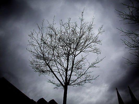 Herbstlich-bewölktes Wetter erwartet uns