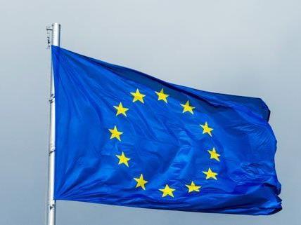 Die EU-Wahl läuft höchst unterschiedlich ab.