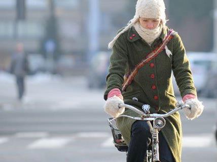 2013 waren mehr Radfahrer in Wien unterwegs.