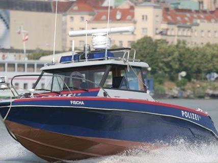 """das Polizeiboot """"Fischa"""" ging nach einer Kollision unter."""