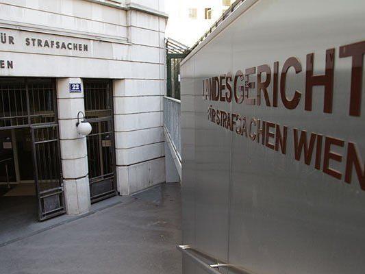 Der Angeklagte steht in Wien vor Gericht