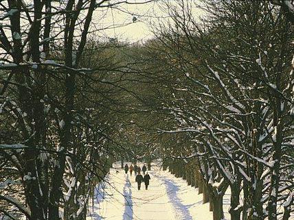 Die Winterruhe im Lainzer Tiergarten ist beendet.