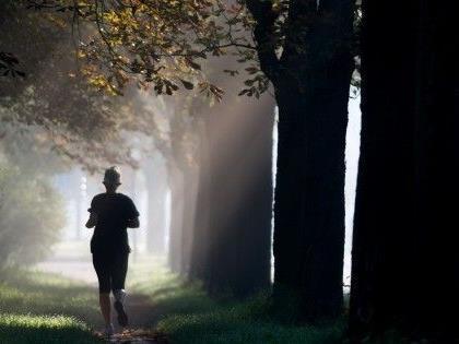 Der Sturm forderte in Wien ein Todesopfer: eine Joggerin