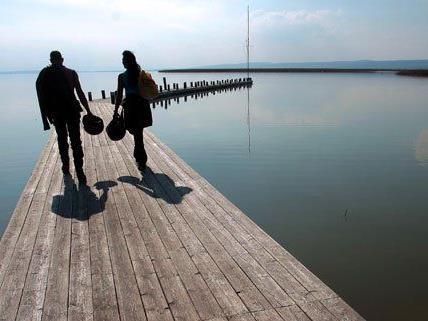 """Die Wasserqualität des Neusiedler Sees wurde mit """"mangelhaft"""" bewertet."""
