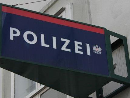 Zwei Jugendliche wurden am Sonntag in Wien-Döbling von der Polizei festgenommen.
